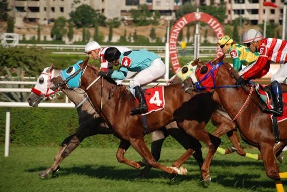 9. Çekirdeği alıp at yarışı izlemek