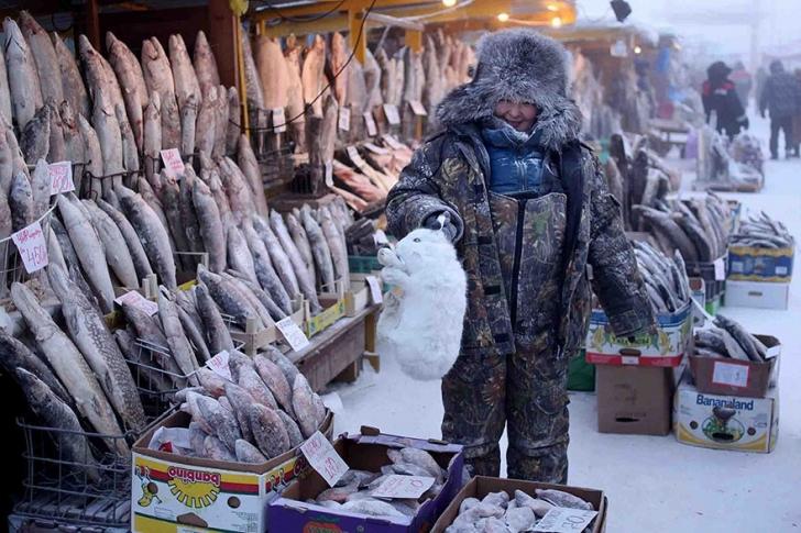 Oymyakon'un en temel gıda ürünü balık. Zira bölgedeki hava şartları tarım ürünlerinin yetiştirilmesini imkansız hale getiriyor.