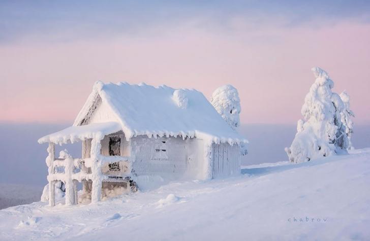 Ve bazen güzellik sadece karla kaplanmak ile de doğabiliyor...