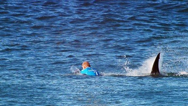 Köpekbalığı Saldırısından Canlı  Kurtulan Sörfçü Mick Fanning Mübarek İnsanmış