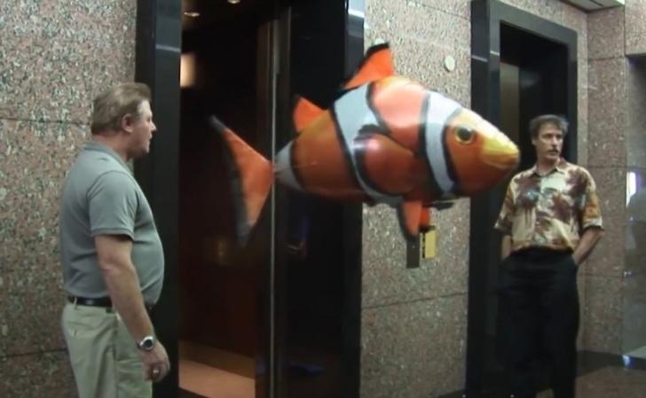 Siz Hiç Uçan Balık Gördünüz Mü?