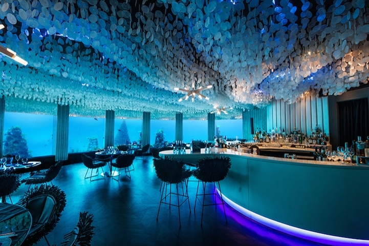 Ve tabii en önemlisi manzara. Etrafı camla kaplı mekan, 90 mercan türünün yanı sıra birçok farklı sualtı canlısını görme imkanı sağlıyor.