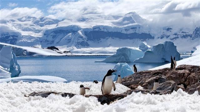 Güney Kutbu