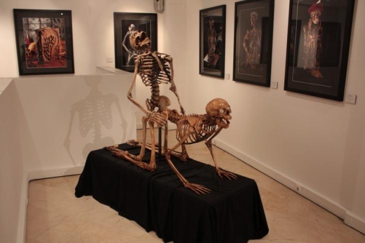 6. Musee Erotisme (Fransa)