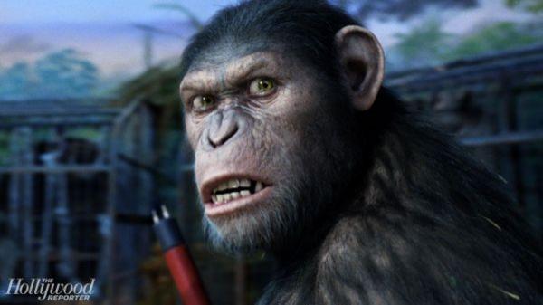 Yeni Maymunlar Cehenneminde Maymun Olmak İsteyenler, İnternette Maymunluk Yapmak Zorunda!