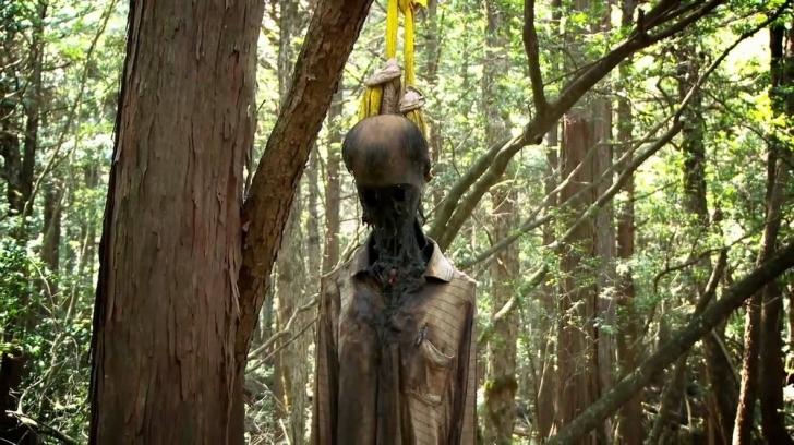 1. Aokigahara Ormanı