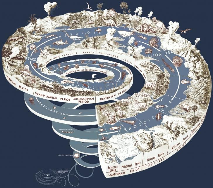 Eğer Zamanı Geri Alıp Dünya'yı Baştan Başlatsaydık, Yaşam Aynı Şekilde Mi Evrim Geçirirdi?