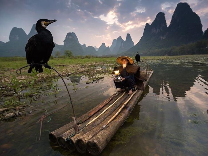 14. Kuş besleyenler, Çin