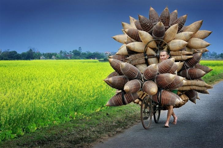 Bir adam bambu balıkçı sepetlerini taşırken, Hung Yen Bölgesi, Vietnam