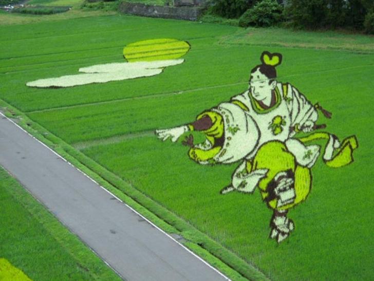 Bunlar Sıradan Pirinç Taralaları, Ama Hasat Zamanı Ne Olduklarına Bir Bakın