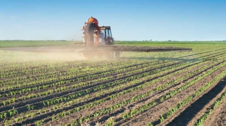 Hava Kirliliğine İnsanlardan Daha Çok Katkısı Var: Tarımcılık