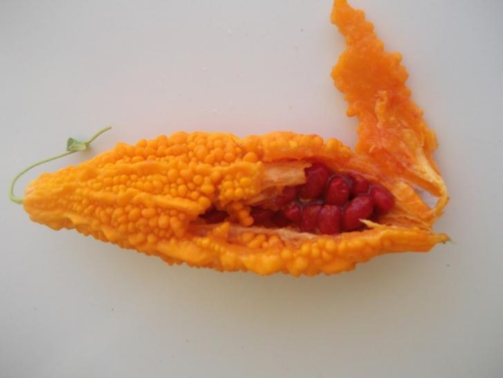 Kanıtlarla Konuşuyoruz: Kudret Narı Macunu Kanser Hücrelerinin Yayılmasını Önlüyor!