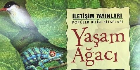 Çocukların Evreni ve Evrimi Anlamasını Kolaylaştıracak, Hâlâ Raflardayken Mutlaka Alınması Gereken 11 Çocuk Kitabı